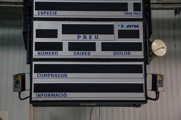 AccióP04.MariaRoig39_od